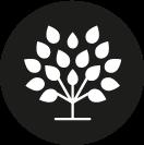 The Spice Tree - Klicka för meny